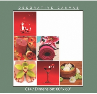 Decorative Canvas - C14