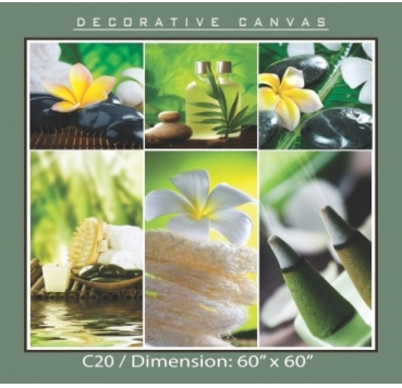 Decorative Canvas - C20