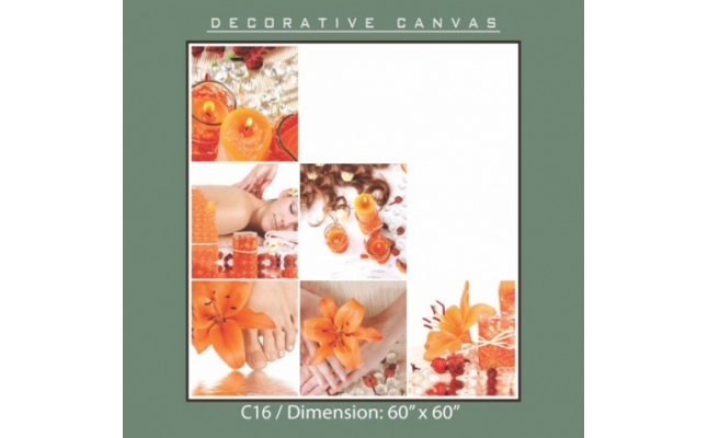 Decorative Canvas - C16
