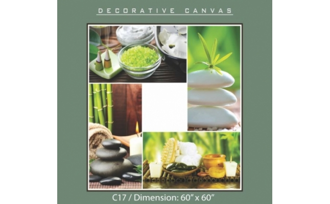 Decorative Canvas - C17