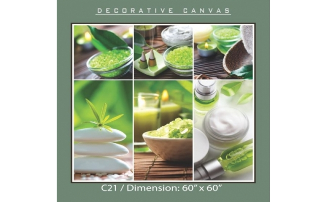 Decorative Canvas - C21