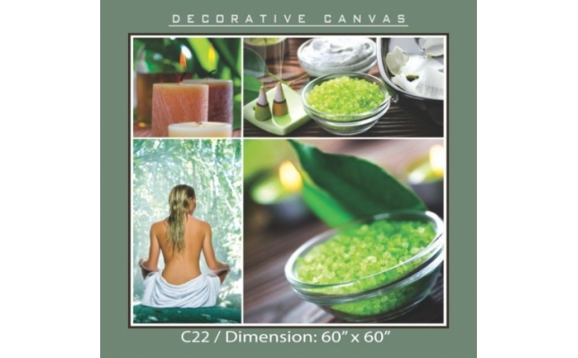 Decorative Canvas - C22