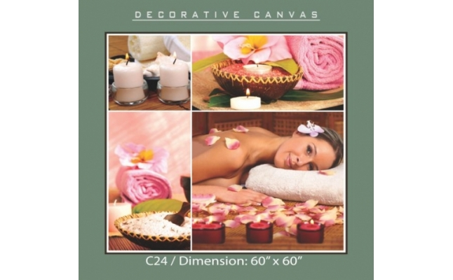 Decorative Canvas - C24